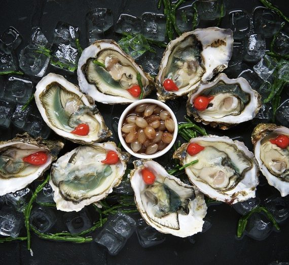 Oysters – expression of upscale gourmet delights
